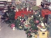 Scan12176 BLOMSTER 04-02-1986