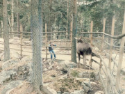 Scan12240 ELG 08-05-1986