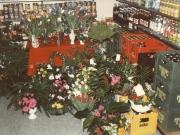 Scan12177 BLOMSTER 04-02-1986