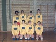 Scan12182 DIVISIONSHOLDET 1985-86