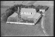 GAMLE BILLEDER AAL_BL04-A1_066_024 ÅR 1950 MOGENS NEDERGÅRD