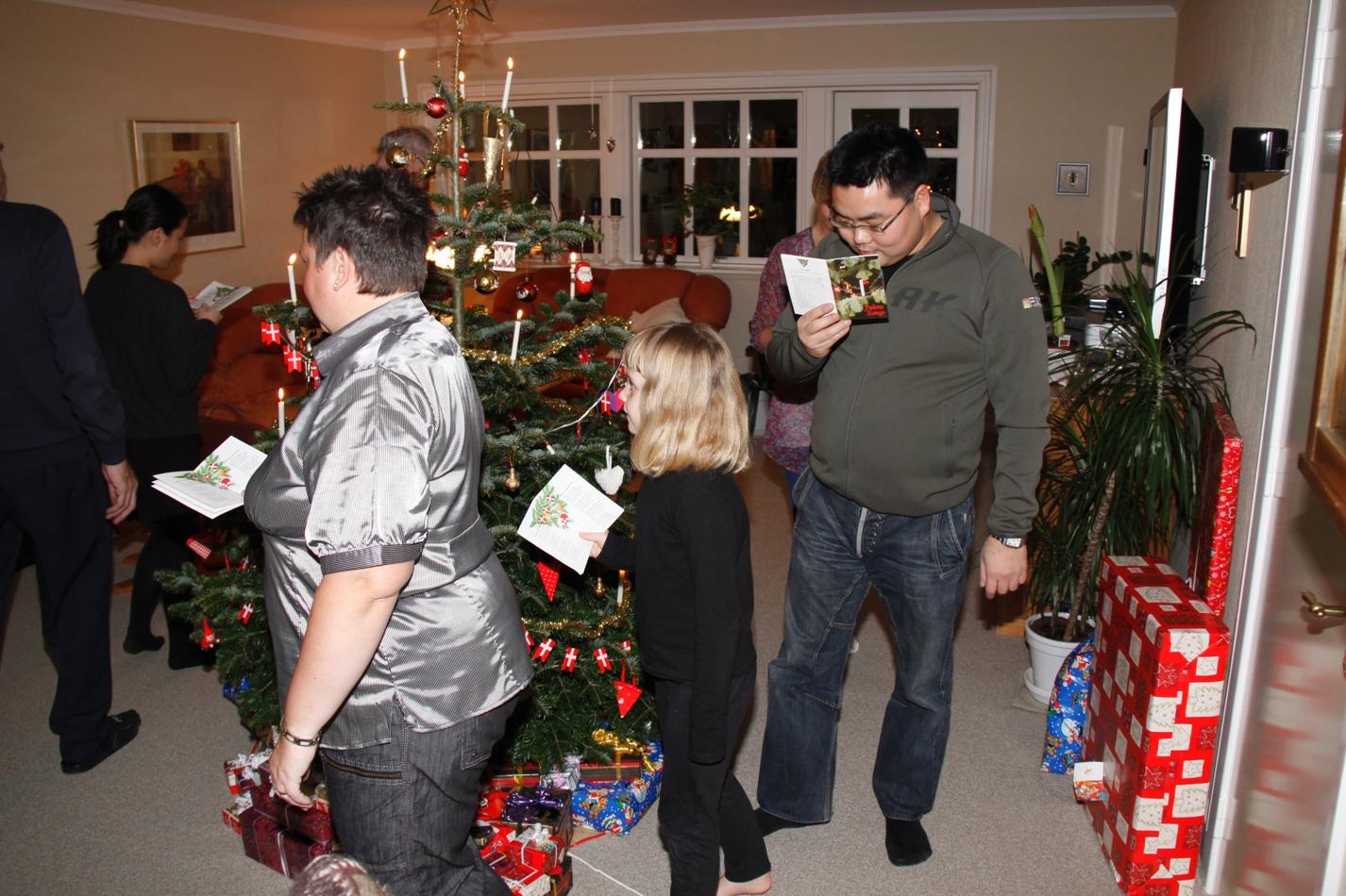 IMG_6374 JULEAFTEN 24-12-2008 (28)