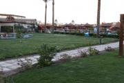 431 HURGHADA 20-27-11-2008 (295)