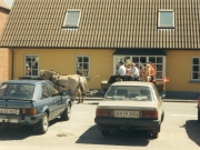 Scan15651 JERSLEV MARKED 26-06-95